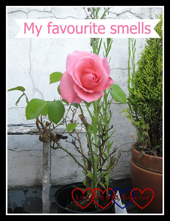 My favourite smells - Little Hearts, Big Love
