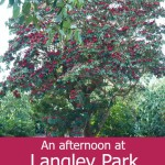 An afternoon at Langley Park
