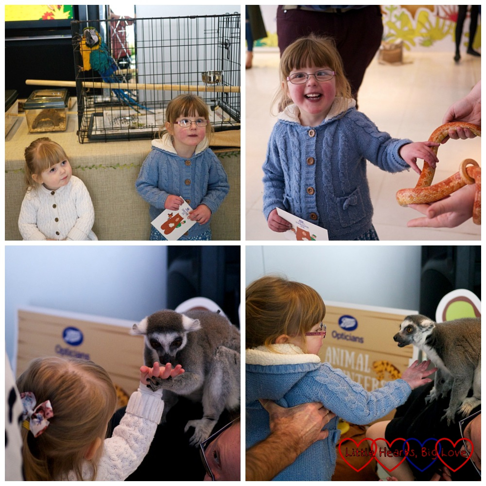 Animal encounters at the #ZookeeperZoe launch party - Zookeeper Zoe – a clever eye check storybook from Boots Opticians - Little Hearts, Big Love