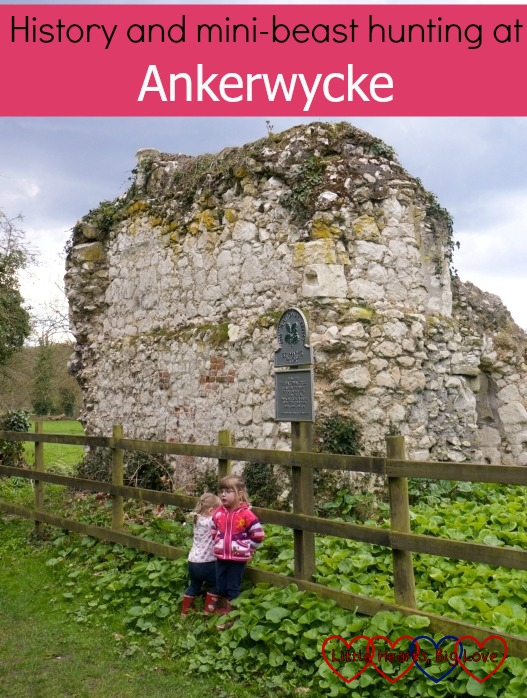 Exploring the ruins of St Mary's Priory and the 2500 year old yew said to be the spot where Henry VIII wooed Anne Boleyn