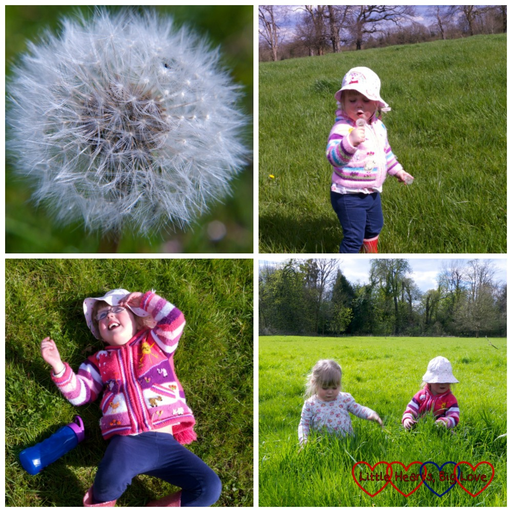Dandelion clocks, lying down and watching the aeroplanes ahead and hunting for mini-beasts in the long grass