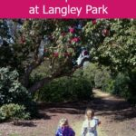Creating fairytale magic in the Temple Gardens at Langley Park