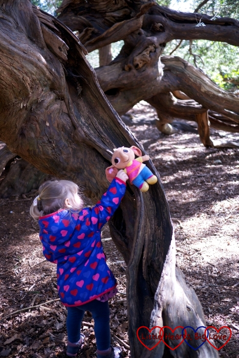 Discovering a fairy slide in the Temple Gardens at Langley Park