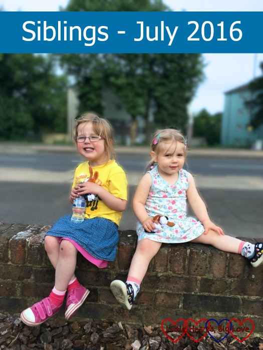 Jressica and Sophie sitting on a wall together - Siblings July 2016