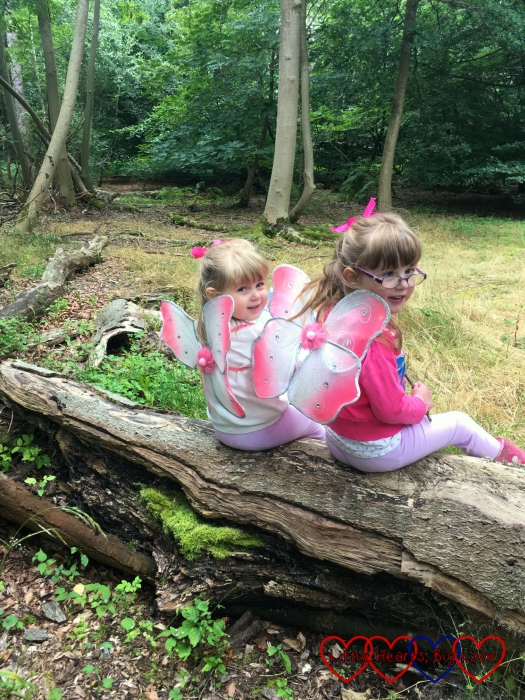 Jessica and Sophie sitting on a log with their fairy wings on and looking over their shoulders at me