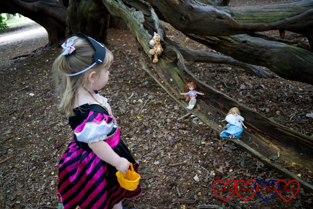 """Sophie in her pirate costume watching her dollies going down the """"slide"""" in the yew tree"""