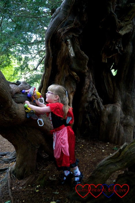 Jessica in her Red Riding Hood costume leaning against a tree trunk and looking out over the park