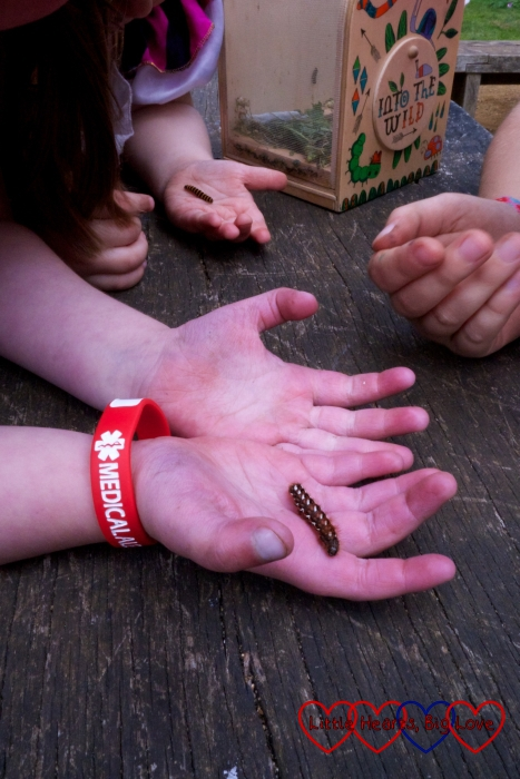Jessica and Sophie holding a furry caterpillar each
