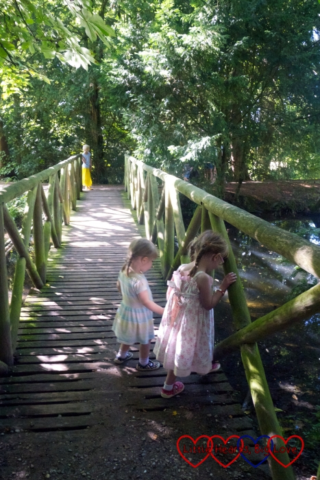Jessica and Sophie playing pooh sticks on the bridge