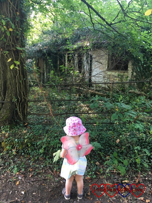 "Sophie looking at ""the witch's cottage"" - a derelict cottage in the woods"