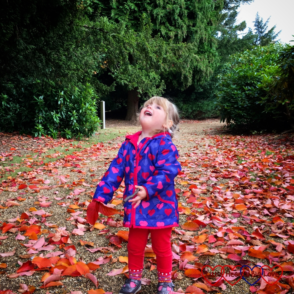 Sophie looking up at the leaves falling from the trees