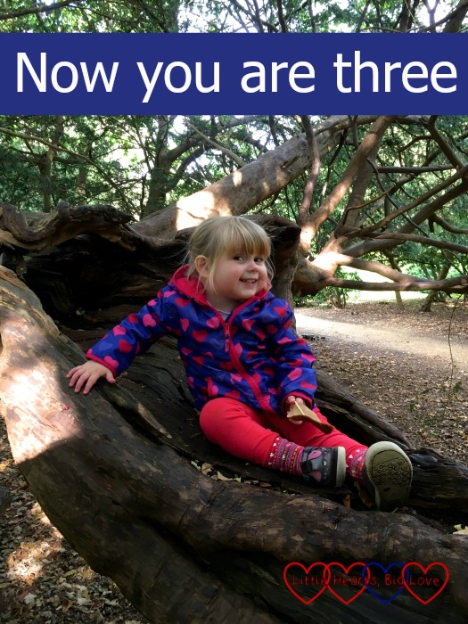 "Sophie sitting in a tree at the park with the text ""Now you are three"""
