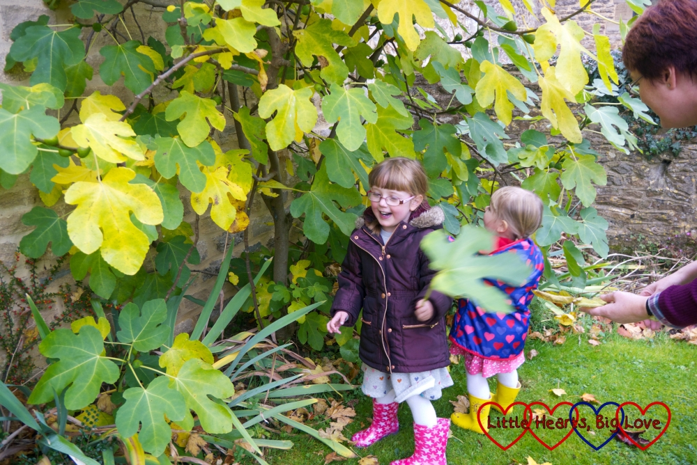 Jessica and Sophie looking at the giant leaves