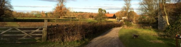 The beautiful view from the entrance of Chiltern Open Air Museum in the winter sunshine