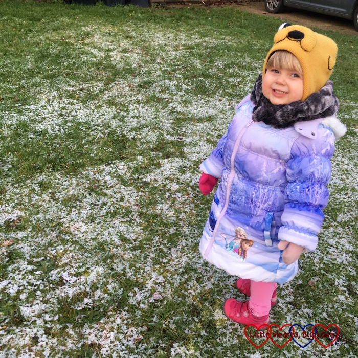 Sophie looking at the faint dusting of snow on the front lawn