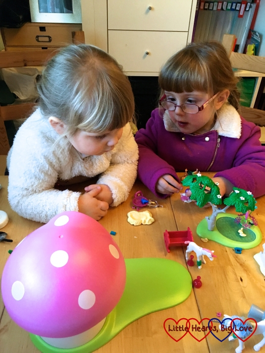 Jessica and Sophie playing together with their new fairy Playmobil