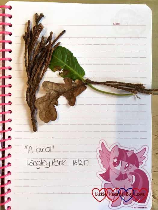Jessica's picture of a bird made with leaves and twigs
