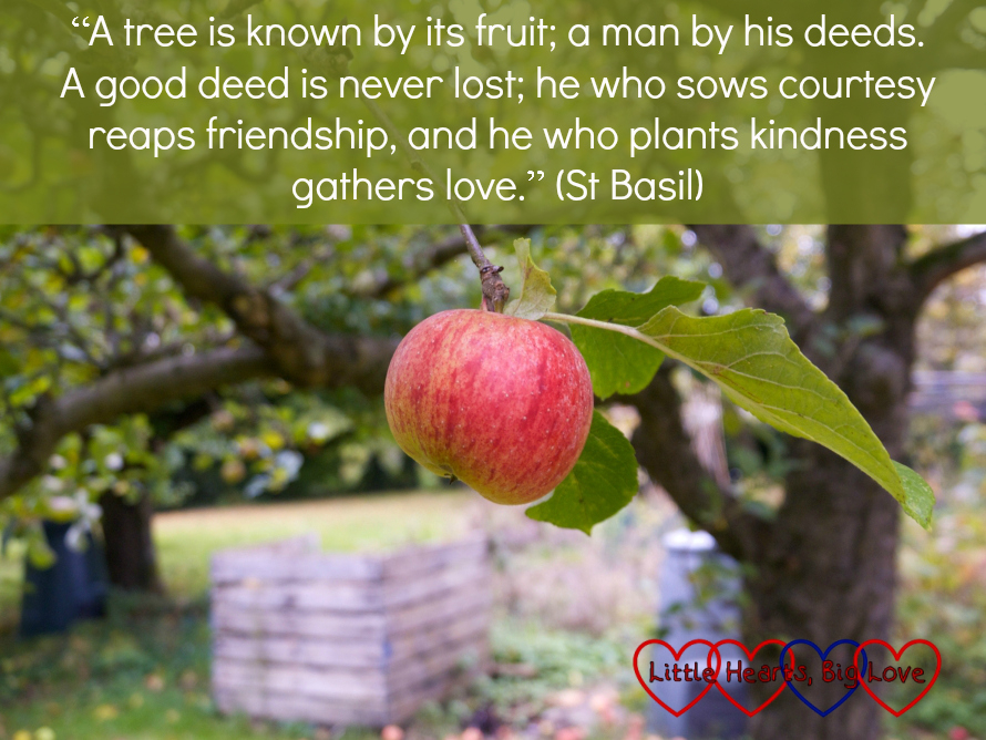 """A picture of an apple on a tree with the quote """"A tree is known by its fruit; a man by his deeds. A good deed is never lost; he who sows courtesy reaps friendship, and he who plants kindness gathers love."""" (St Basil)"""