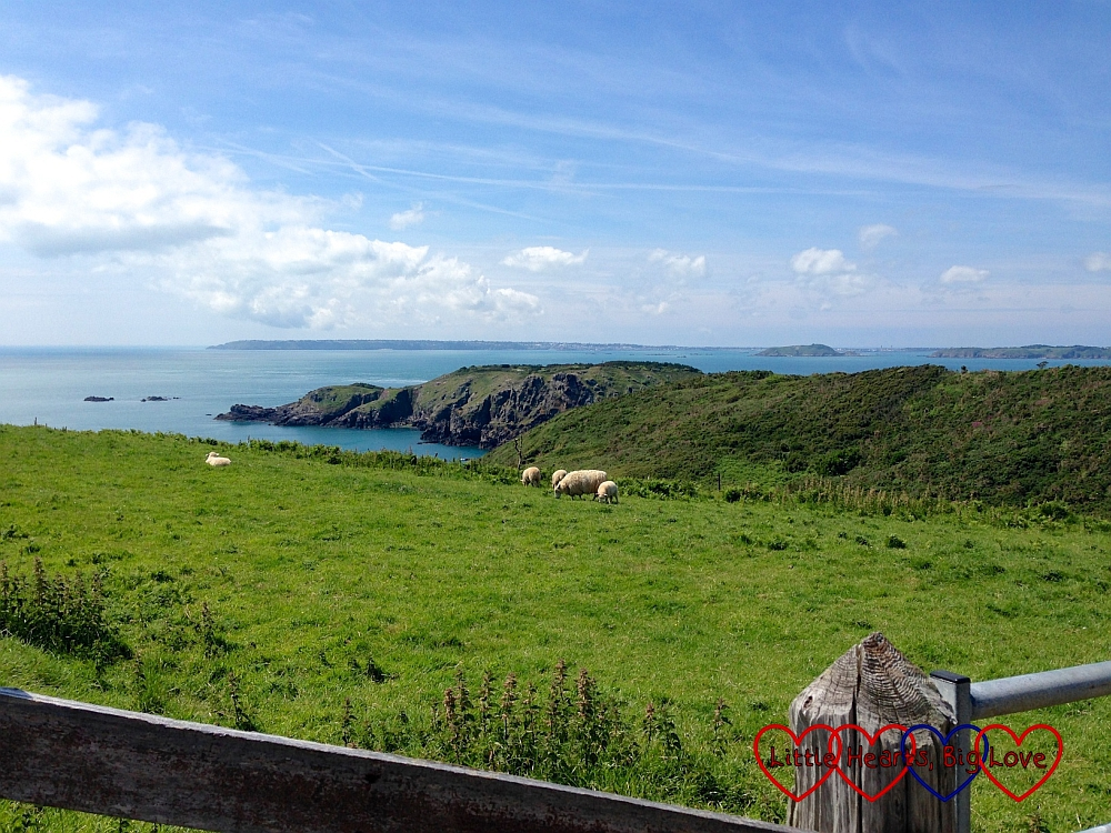 A view across fields in Sark looking out to the sea