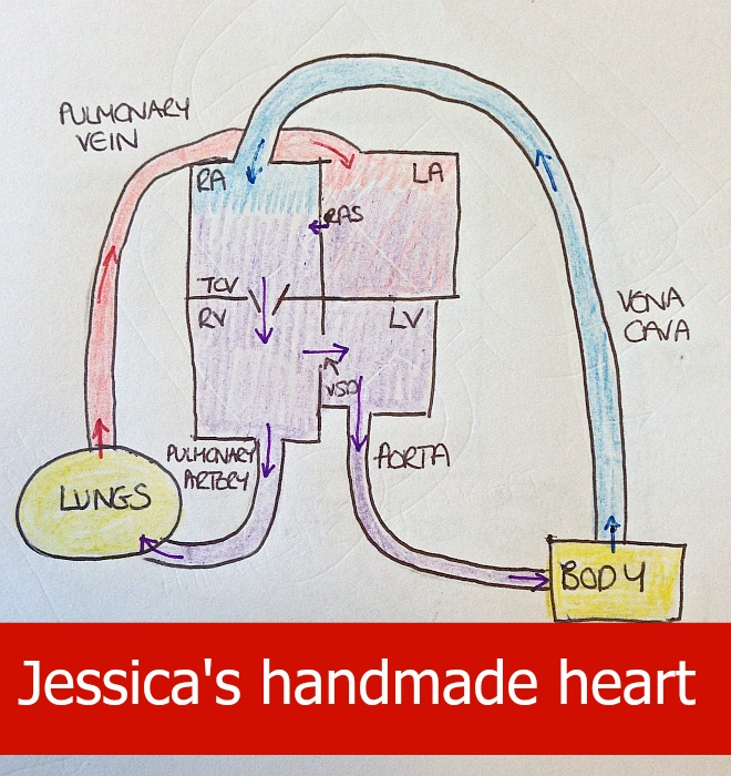Jessica's handmade heart - Little Hearts, Big Love