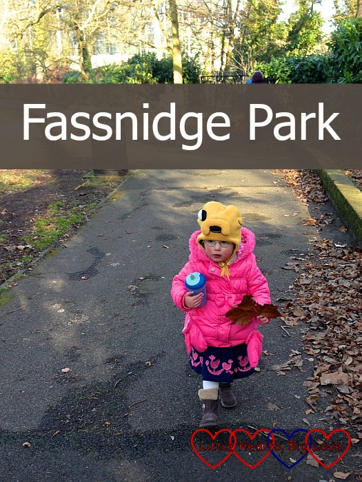 Fassnidge Park - Little Hearts, Big Love