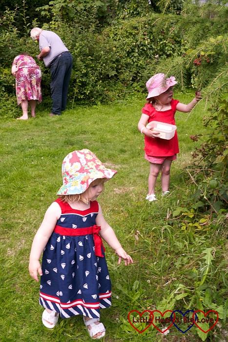 Blackberry picking in Grandma's garden - The Friday Focus 14/08/15 - Little Hearts, Big Love