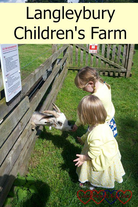 Langleybury Children's Farm - Little Hearts, Big Love