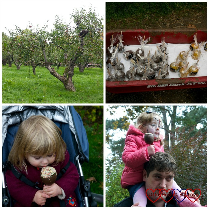 Chocolate covered apples - Outdoor fun at Apple Day - Little Hearts, Big Love
