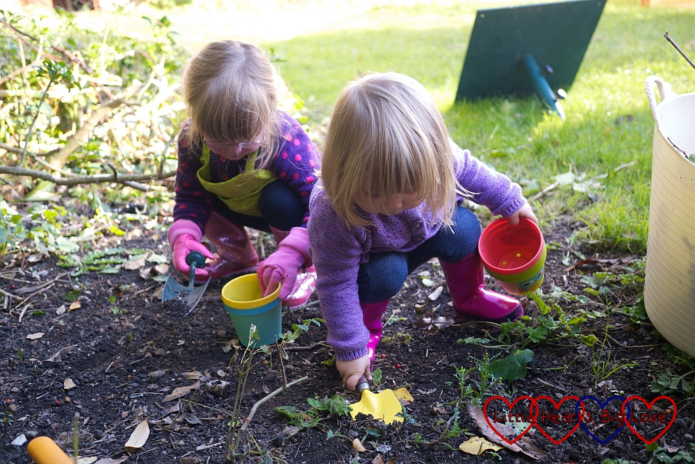Clearing out the garden - The Friday Focus 16/10/15 - Little Hearts, Big Love