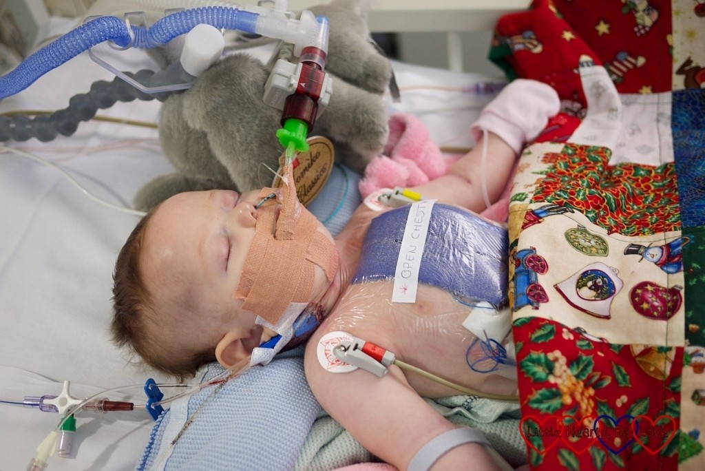 How Christmas on the cardiac ward taught me to be thankful - Little Hearts, Big Love