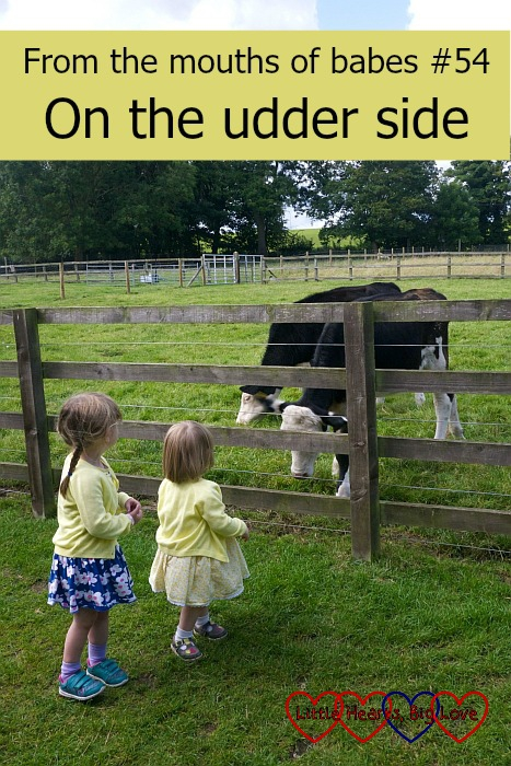 From the mouths of babes #54 - On the udder side - Little Hearts, Big Love
