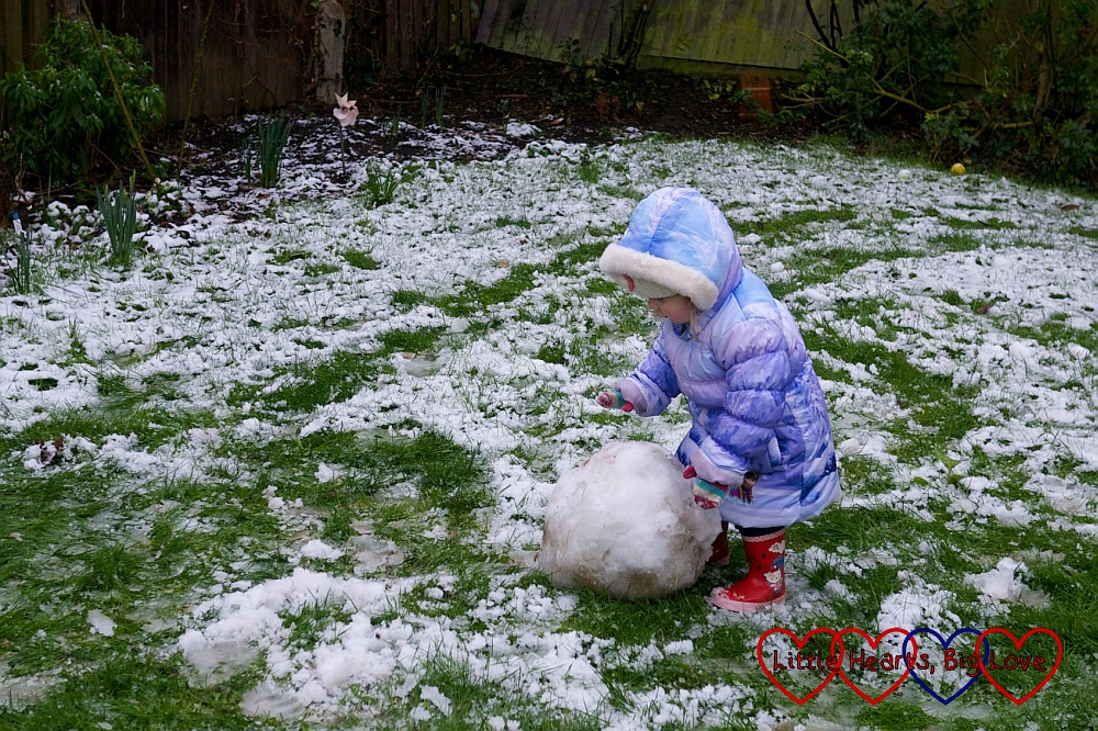 Sophie rolling the snow to make the snowman's body