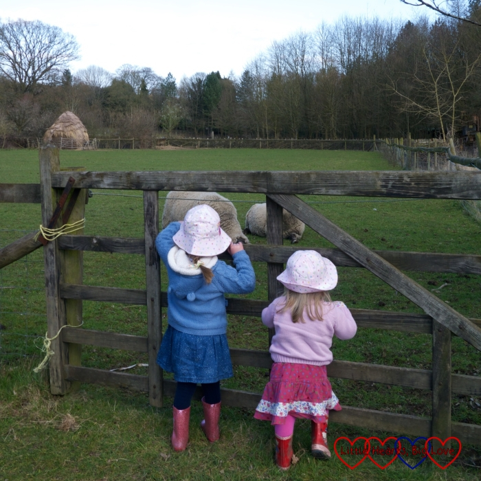 Outdoor fun at Chiltern Open Air Museum - The Friday Focus 01/04/16 - Little Hearts, Big Love