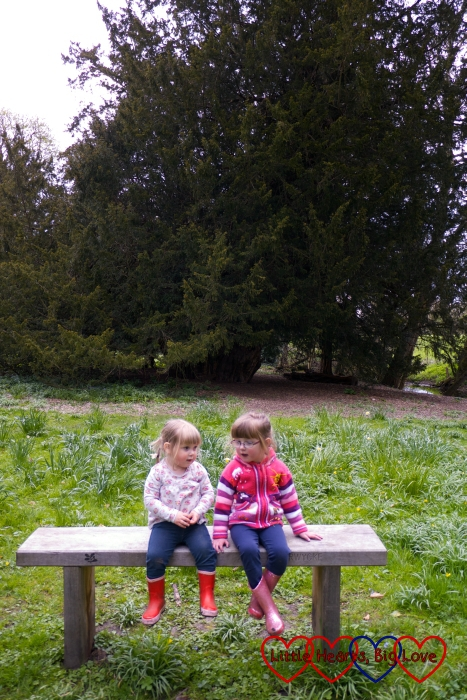 Stopping for a rest in front of the Ankerwyke yew - The Friday Focus 15/04/16