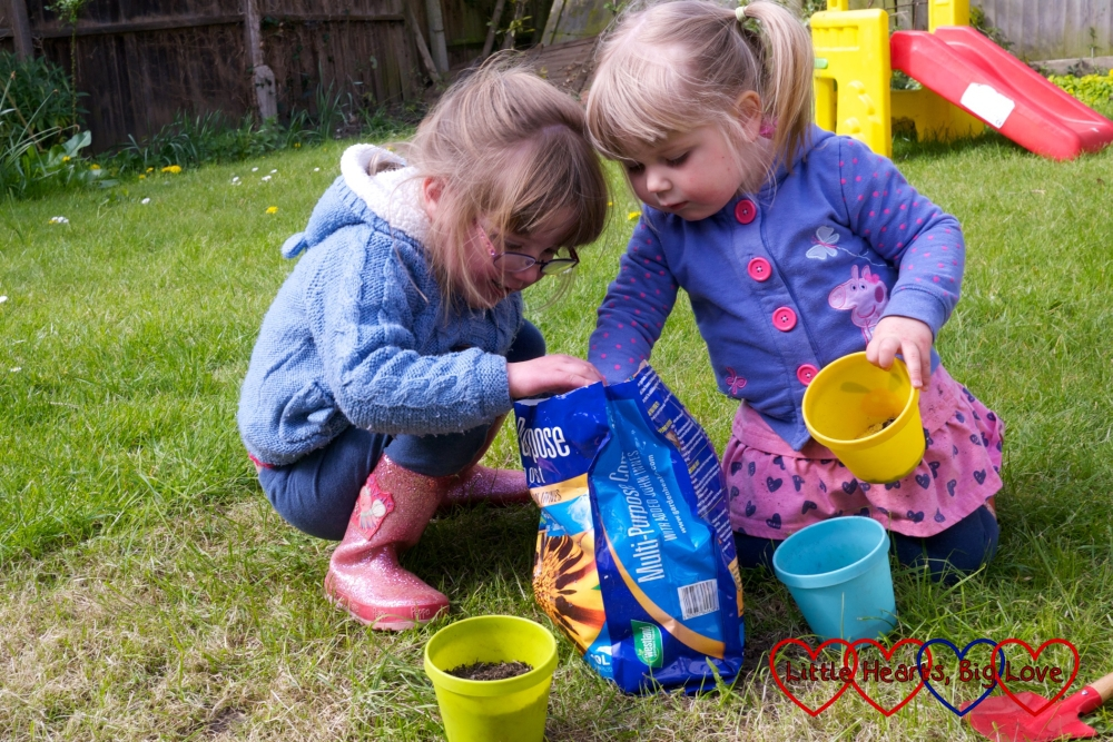 Two little girls busily planting sunflower seeds in the garden
