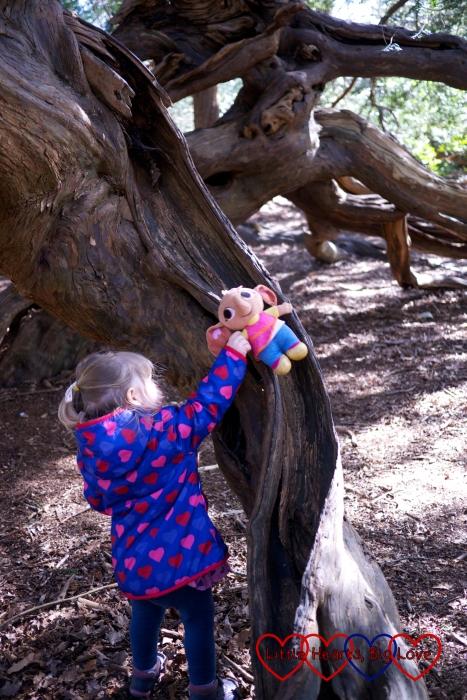 Weaving fairytale magic at Langley Park
