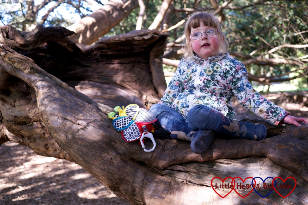 My little heart warrior sitting up on a tree branch after climbing trees for the first time