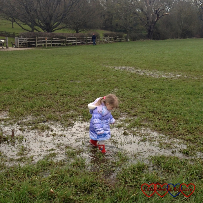 Jumping up and down in muddy puddles in the boggy ground