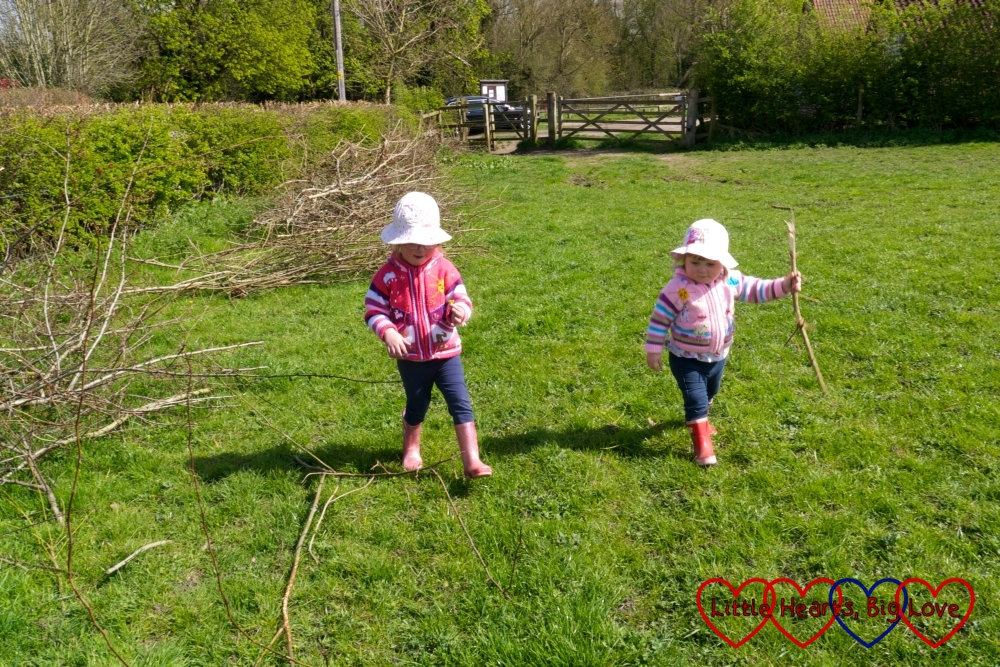 The girls setting out on a walk across the meadow - and picking up sticks along the way