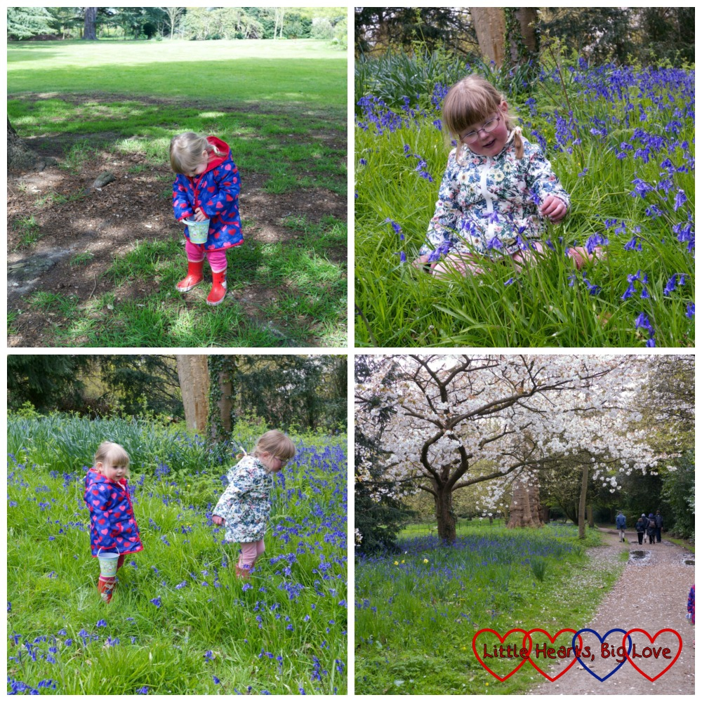 The girls in amongst the bluebells at Osterley Park