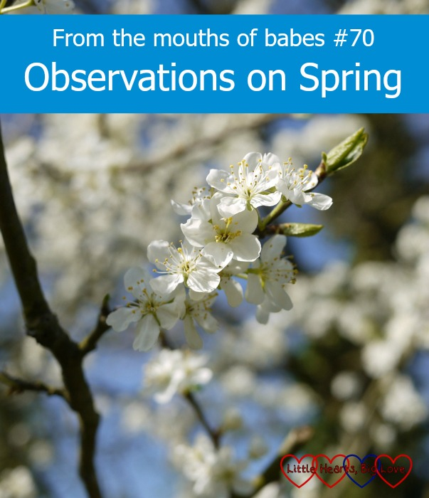 Observations on Spring - sharing this week's #ftmob moments