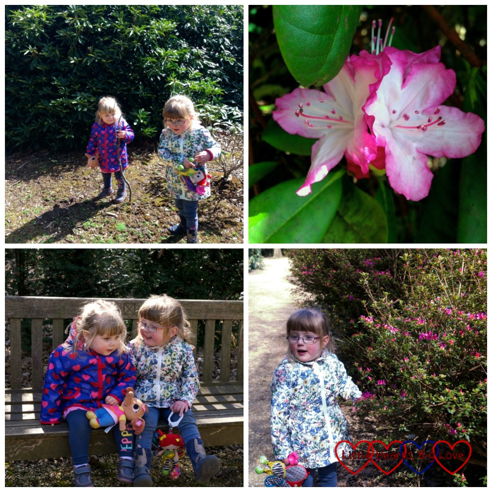 Exploring the Temple Gardens at Langley Park and creating fairytale magic