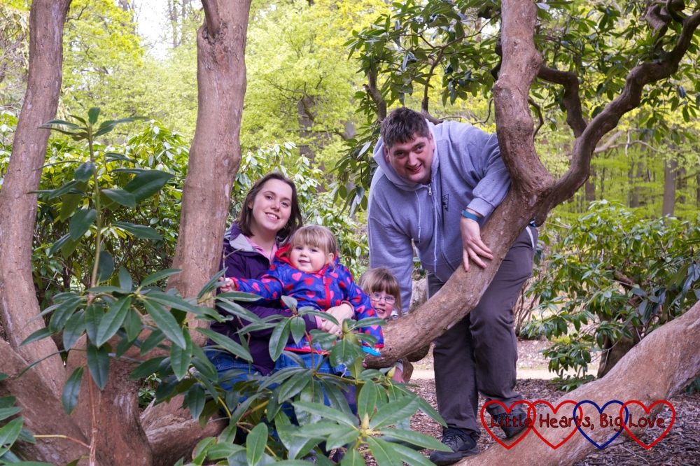 A family moment in amongst the trees at Langley Park