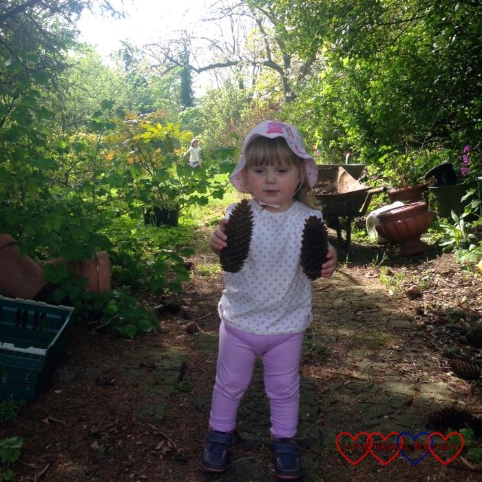 Collecting spruce cones in Grandma's garden - My Sunday Photo 08/05/16