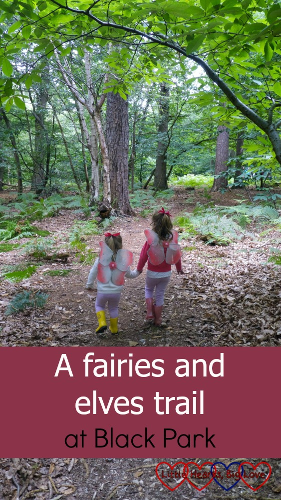 My little fairies heading off into the woods on a fairies and elves trail