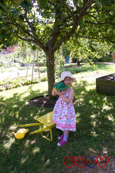 Jessica with a wheelbarrow and watering can in the kitchen garden at Hughenden