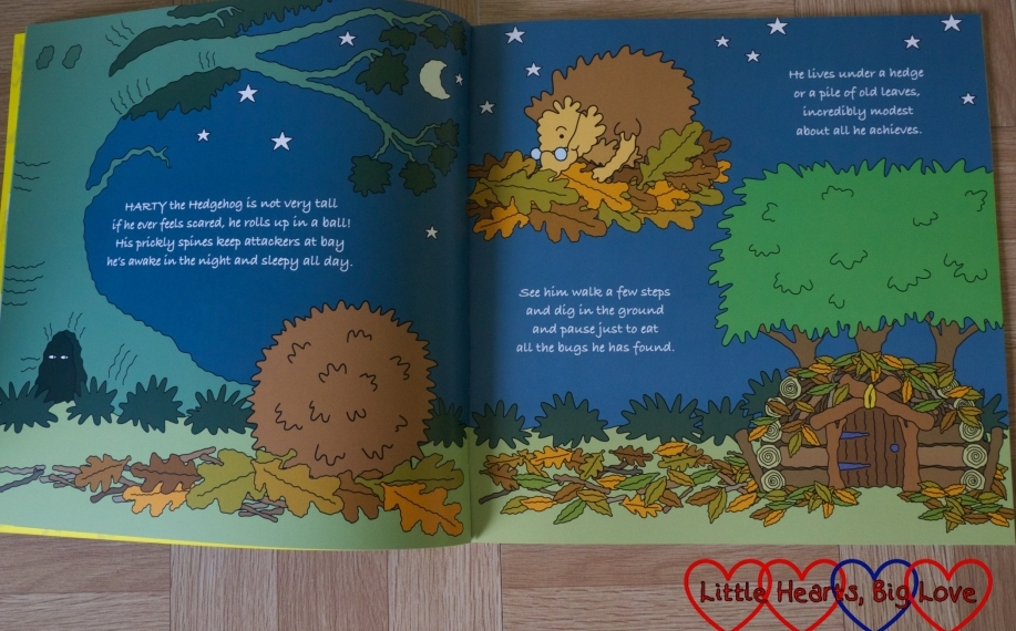 Introducing Harty the Hedgehog - a double-page spread from Harty Hedgehog and his BuZZy Friends