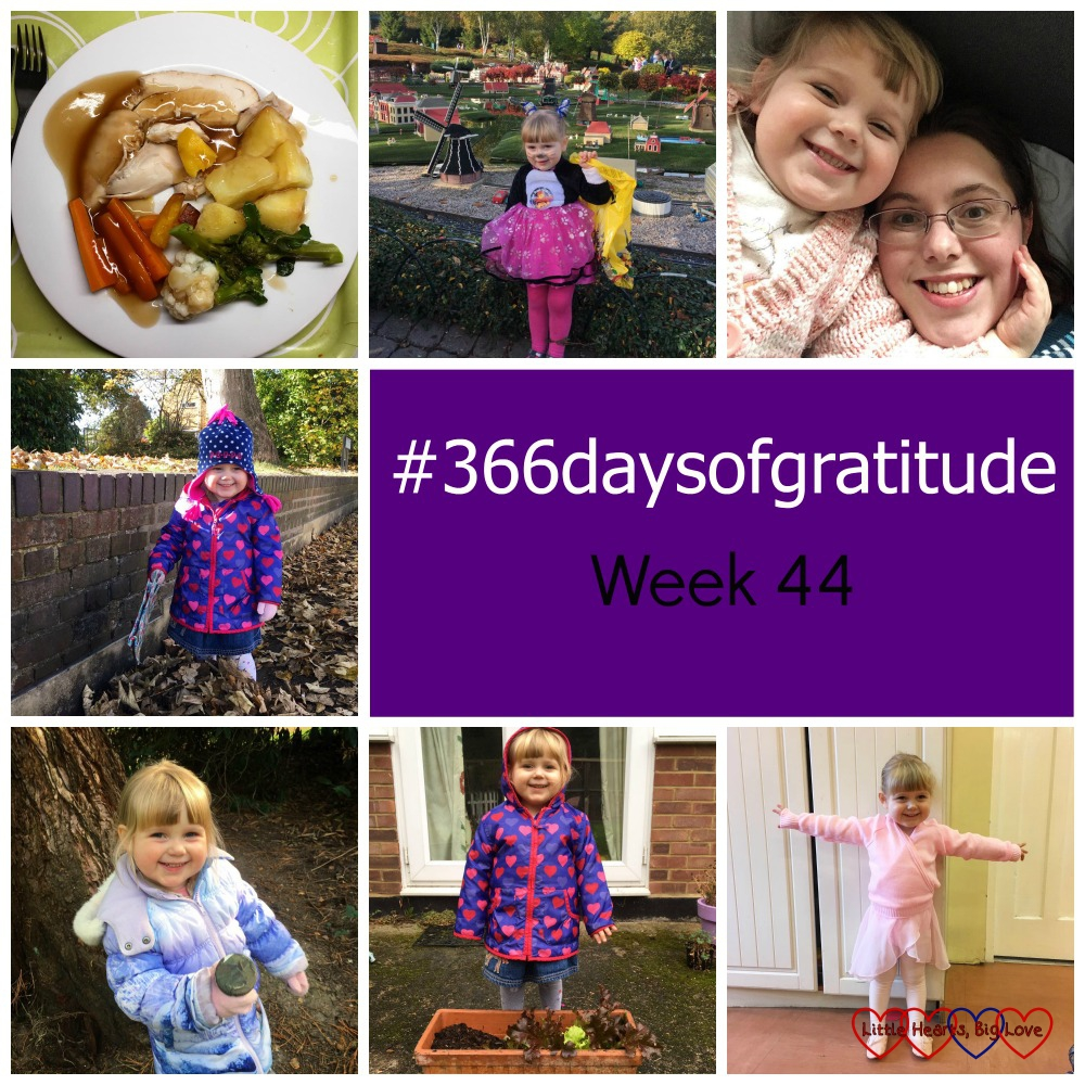 Unexpected Sunday roasts, winning the fancy dress competition at Legoland, snuggles with my baby girl, piles of fallen leaves, geocaches, growing lettuce and first ballet lesson - the things I've been grateful for this week