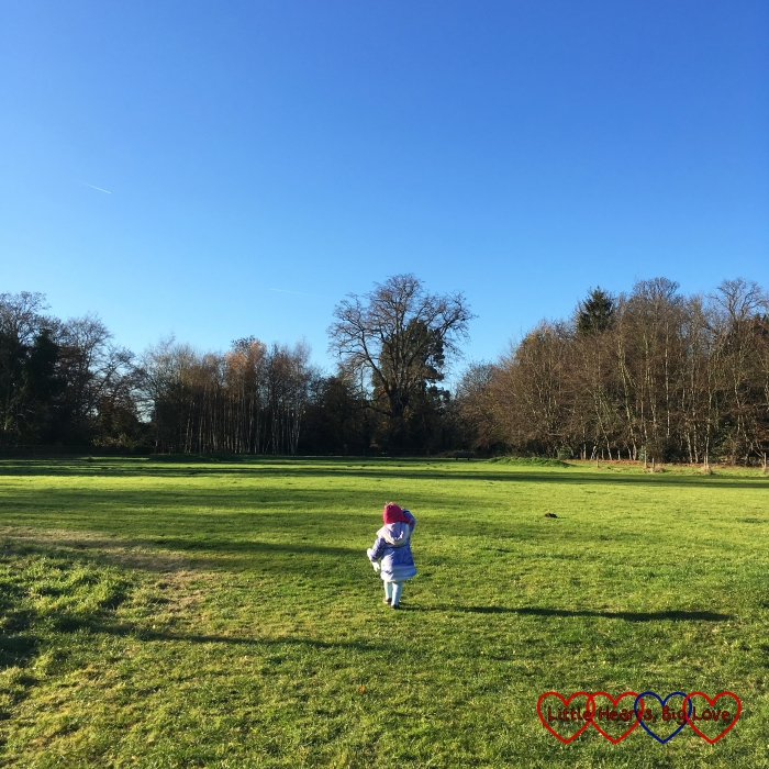 Sophie running out into a meadow in the sunshine