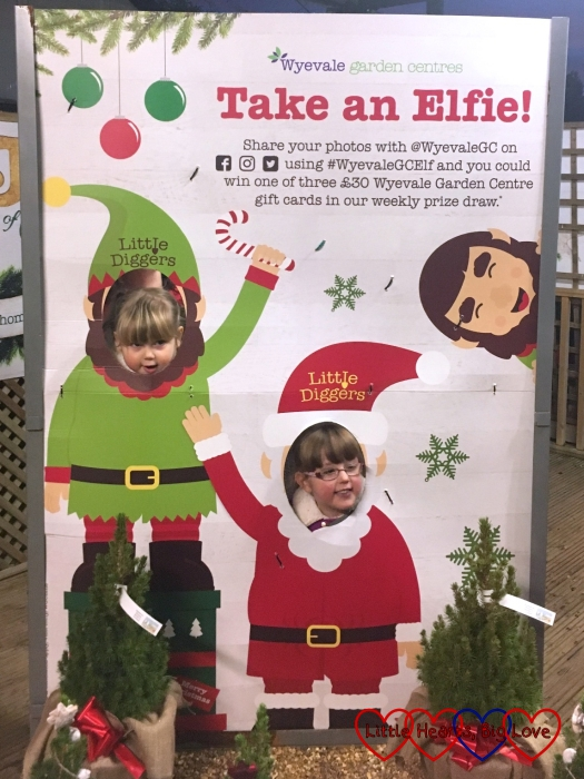 "Jessica and Sophie posing for an ""elfie"""